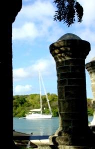 Antigua - Nelsons Dockyard - Pipistrelle