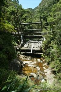 The Kauri Dam