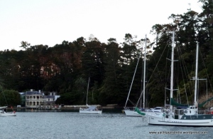 Duetto in Kawau with Mansion House in background