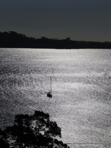Pipistrelle at anchor off Waiheke