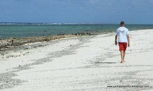 Huon Reef