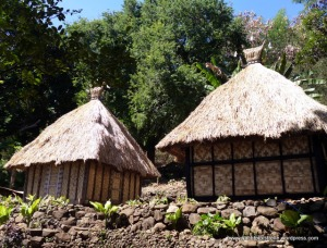 Traditional village dwellings