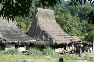 Traditional dwellings