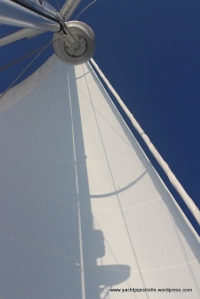 Mainsail by Lidgard