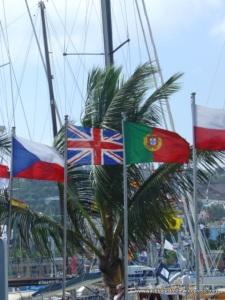 Flying the flag