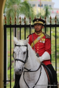 Guard to horse: 'I think I may faint!'