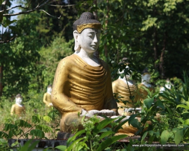 buddhas in the undergrowth