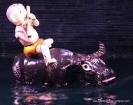 Water (buffalo) music