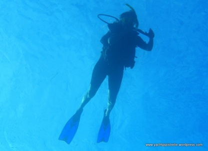 One diver - guess who?