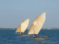 Madagascan dhows with outriggers