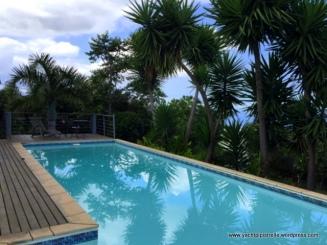 The pool - still cool at 20 deg!