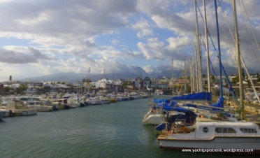 Marina and town in the background