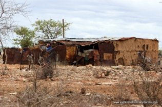 Rural mud huts