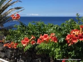 Colourful seaward vista