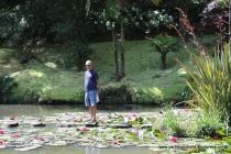 Amongst lilies on the bubbling lake!