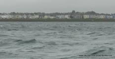 Uninviting arrival - Ballyholme Bay