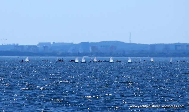 Optimist sails glinting in the sun against Gdansk backdrop